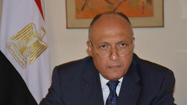"""مصر تهاجم تركيا: تدخلاتها في المنطقة """"سافرة"""""""